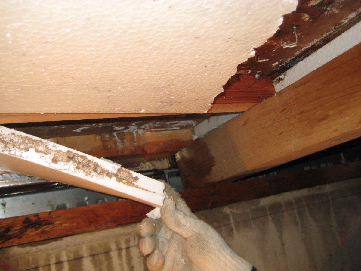 床下から断熱材撤去①